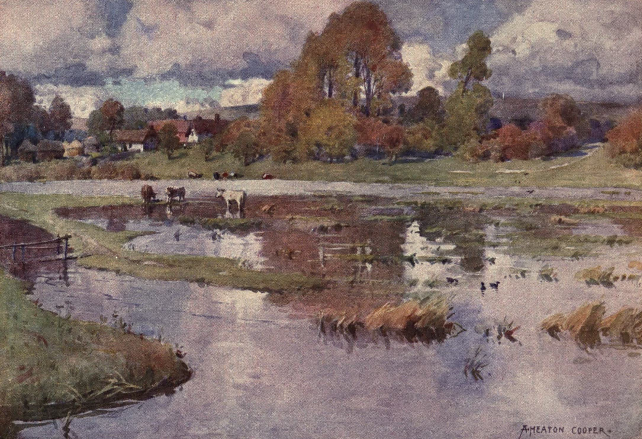 Isle of Wight Painted and Described - Water Meadows of the Yar near Alverstone (1908)