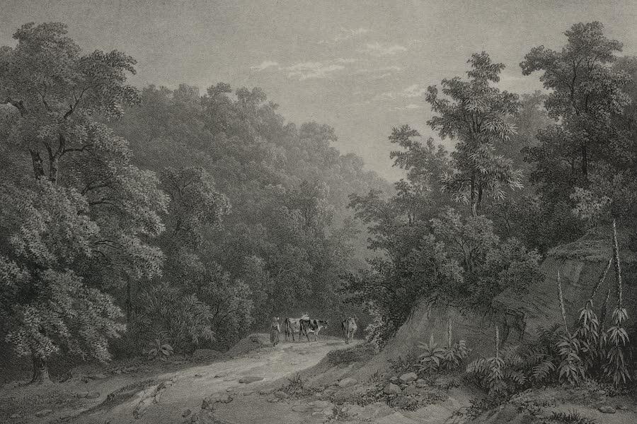 Itineraire Pittoresque du Fleuve Hudson Atlas - Schooley's Springs (1828)
