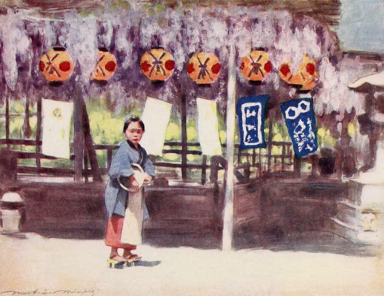 Japan : A Record in Colour - Wistaria (1901)