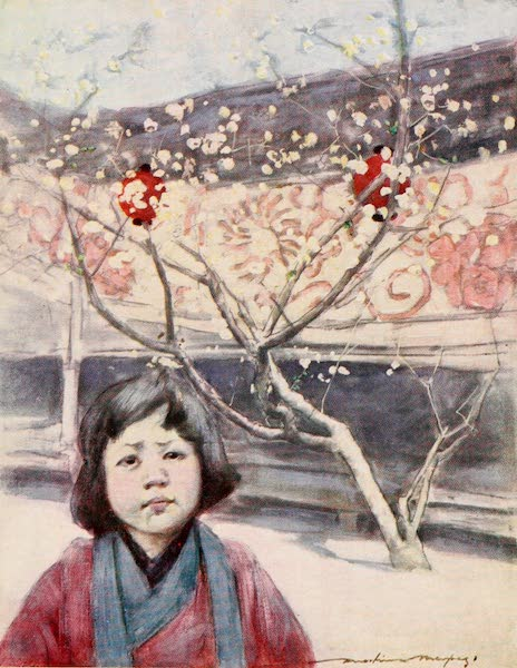 Japan : A Record in Colour - A Jap in Plum-colour (1901)