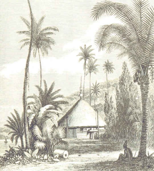 Journal of a Cruise Among the Islands of the Western Pacific - Basset's House (1853)