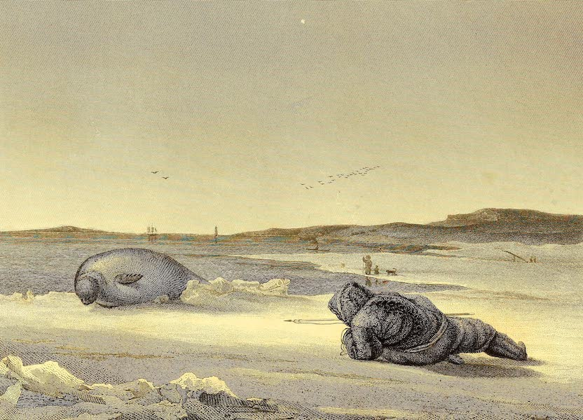 An Esquimaux watching a Seal