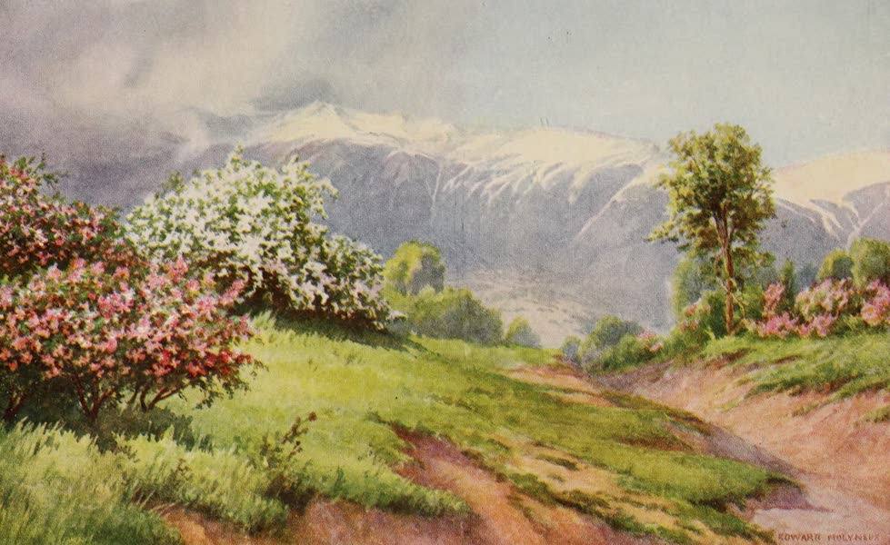 Kashmir, Painted and Described - The Land of Roses (1911)