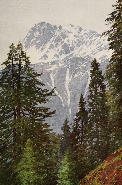 Kashmir, Painted and Described - Kotwal from the Forest above Kangan, Sind Valley (1911)