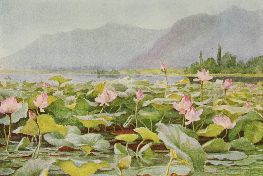 Kashmir, Painted and Described - The Residency and Club, Srinagar (1911)