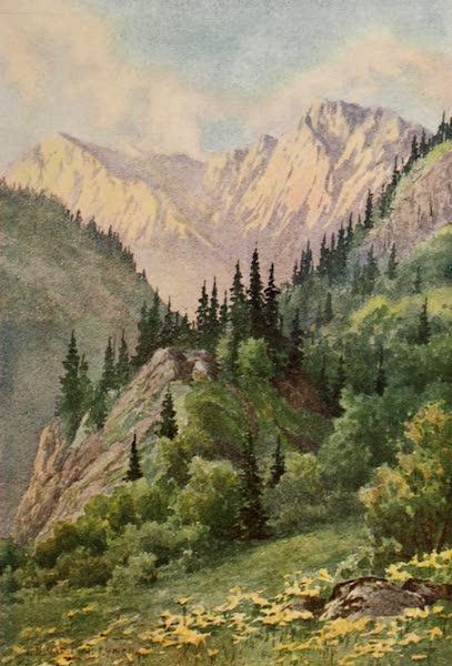Kashmir, Painted and Described - The Tannin Glen, Lidar Valley (1911)