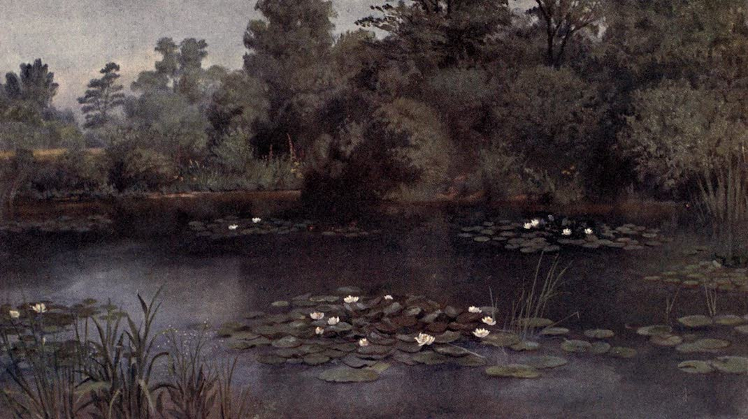 Kew Gardens, Painted and Described - The Water-Lily Pond (1908)