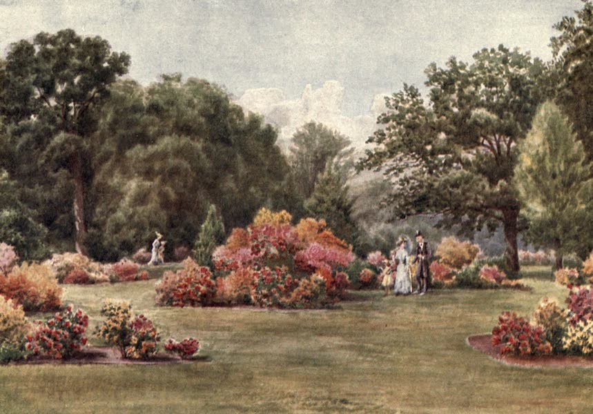 Kew Gardens, Painted and Described - The Azaleas (1908)