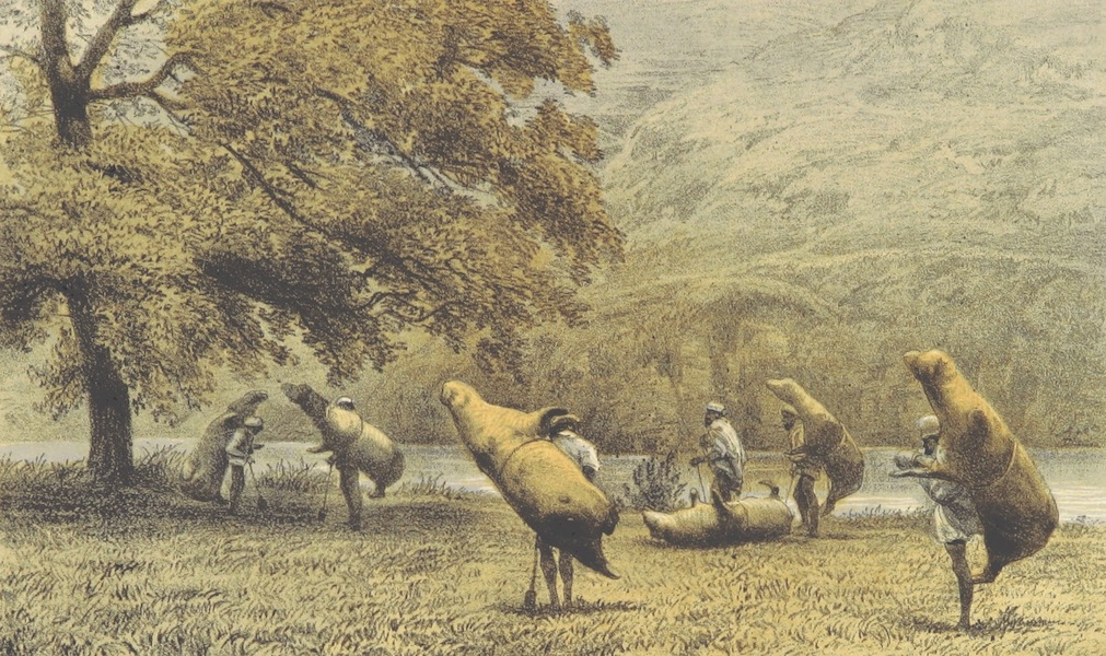 Kulu: It's Beauties, Antiquities and Silver Mines - Ferry Men in Kulu with Inflated Buffalo Skins (1873)
