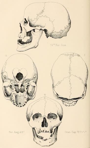 Ladak, Physical, Statistical, and Historical - Settled Boti of Ladak, Le (1854)
