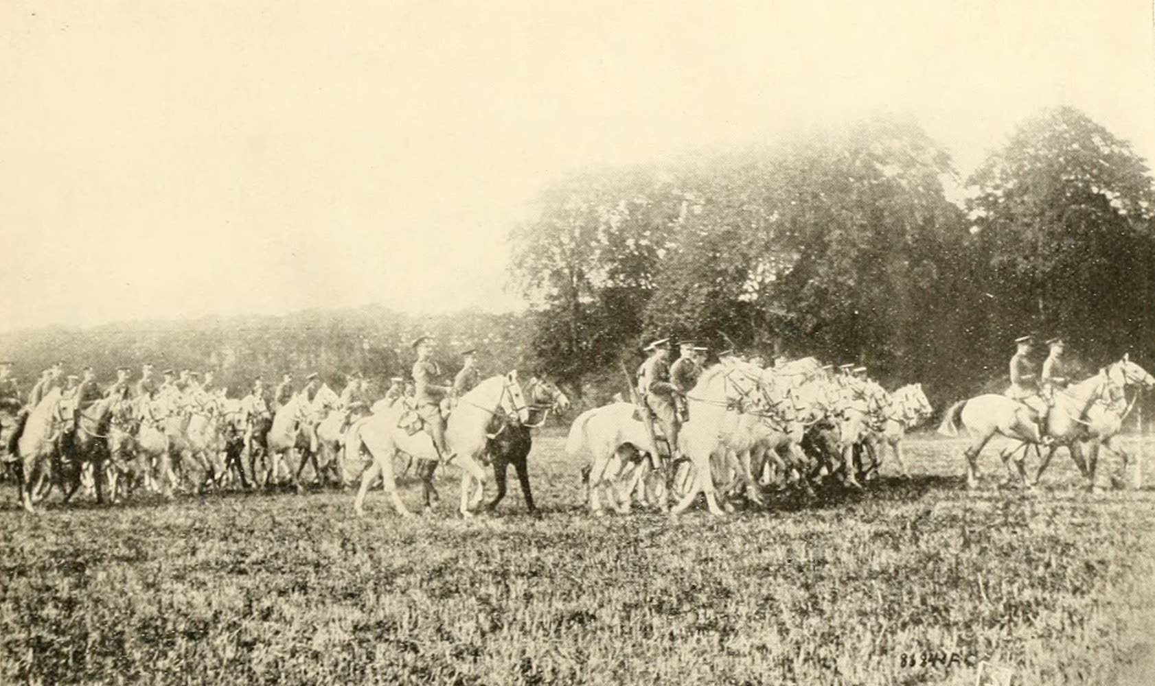 Laird & Lee's World's War Glimpses - Famous Scots Greys Win New Glories in France (1914)