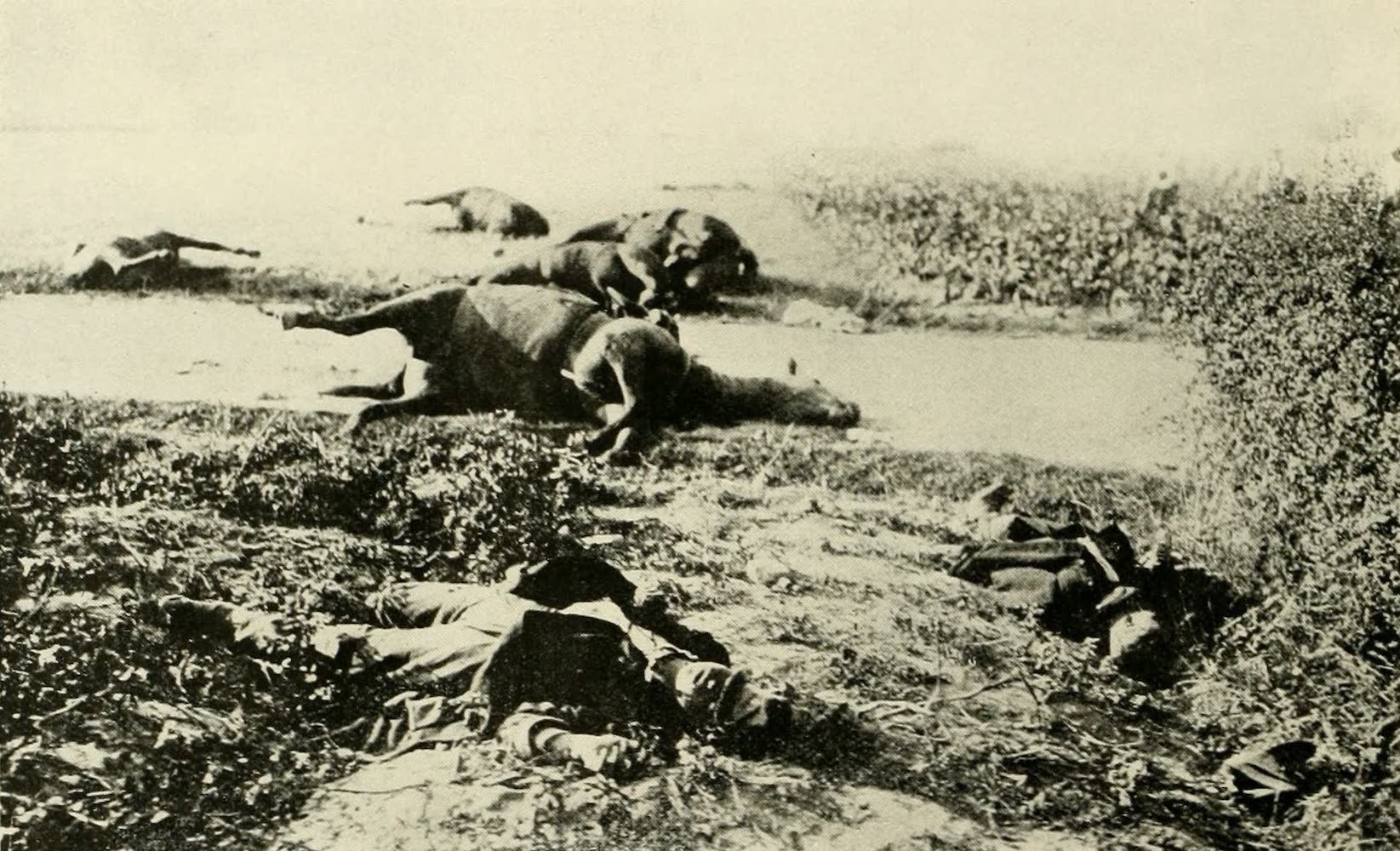 Laird & Lee's World's War Glimpses - After the Battle of Haelen (1914)