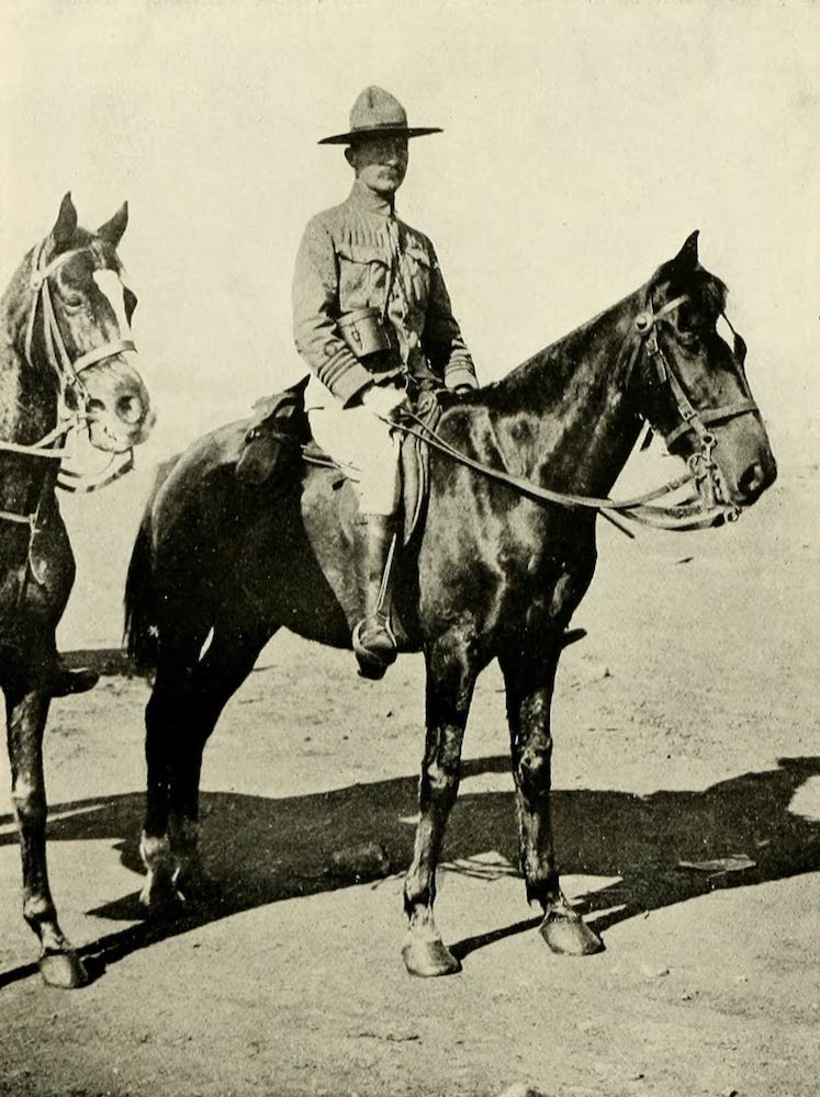 Laird & Lee's World's War Glimpses - General Baden Powell (1914)