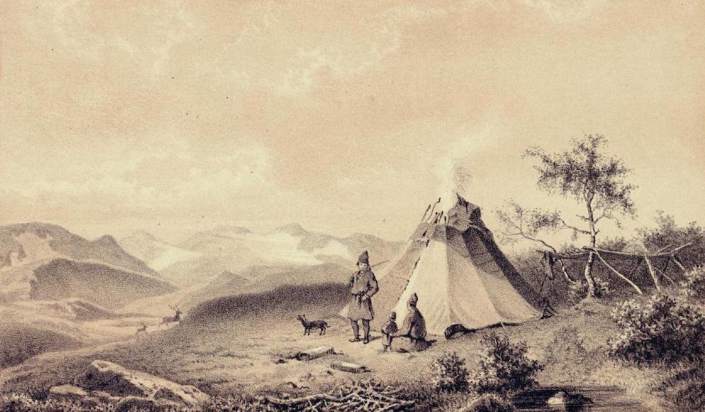 Lappland, dess natur och folk - Uppa fjellen (1871)