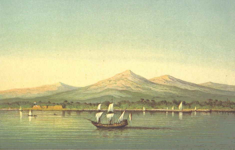Lauwerbladen uit Neerlands Gloriekrans - De Stad Der Palmdoomen (1875)
