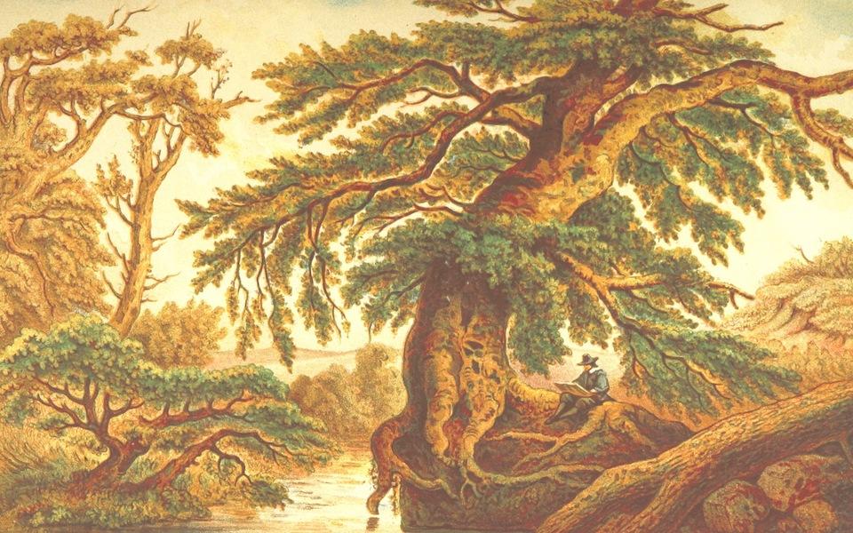 Lauwerbladen uit Neerlands Gloriekrans - Een Natuurstudie (1875)