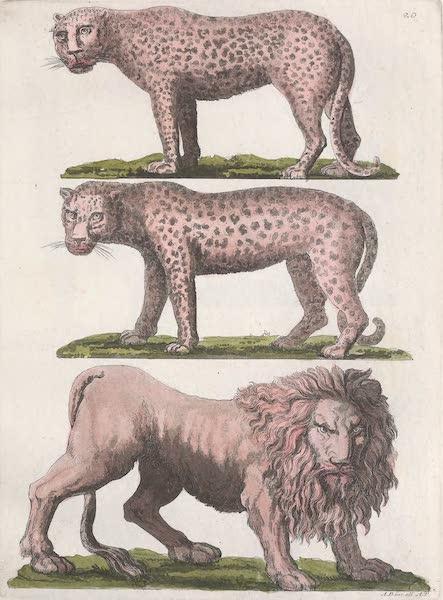 Le Costume Ancien et Moderne [Afrique] Vol. 2 - Animaux [I] (1819)