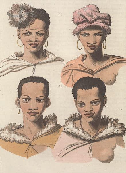 Le Costume Ancien et Moderne [Afrique] Vol. 2 - Hottentots Boschismans (1819)
