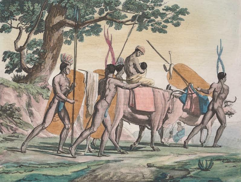 Le Costume Ancien et Moderne [Afrique] Vol. 2 - Hottentots-Korahs (1819)