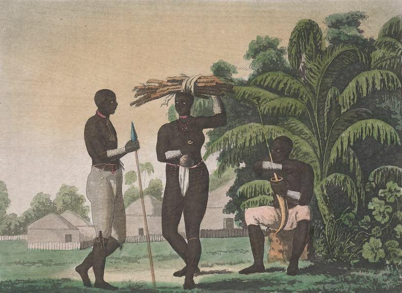 Le Costume Ancien et Moderne [Afrique] Vol. 2 - Habitans de la rive Meridionale du fleuve Mafumo (1819)