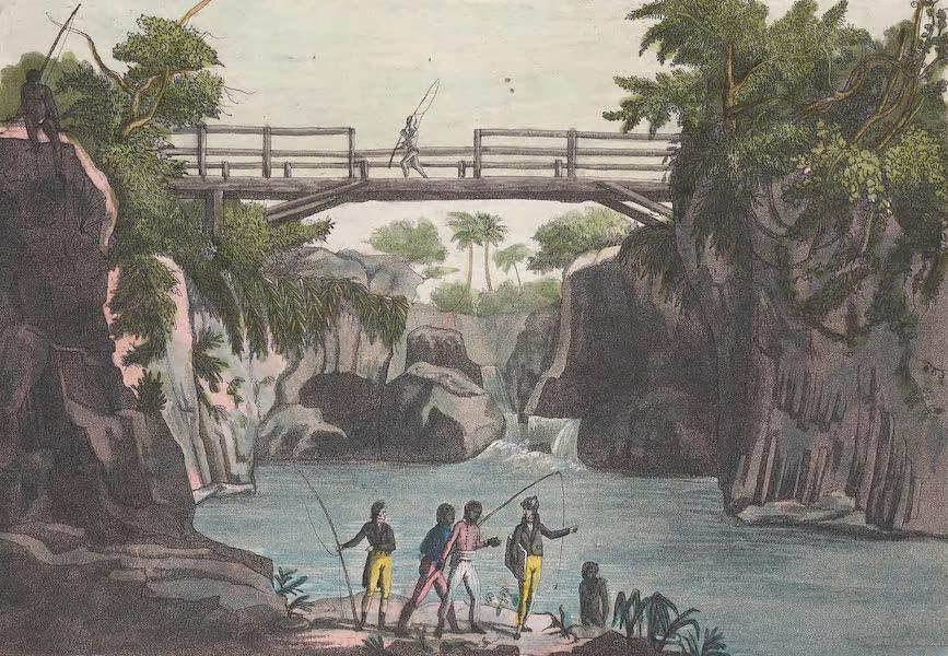 Le Costume Ancien et Moderne [Afrique] Vol. 2 - Pont et cascade de cette riviere [II] (1819)