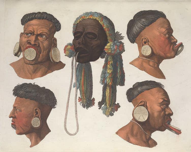 Le Costume Ancien et Moderne [Amerique] Vol. 2 - Physionomie de quelques Botocudos (1821)