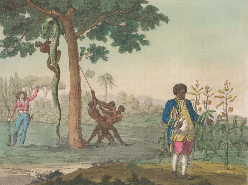 Le Costume Ancien et Moderne [Amerique] Vol. 2 - Graman-Quacy etc (1821)