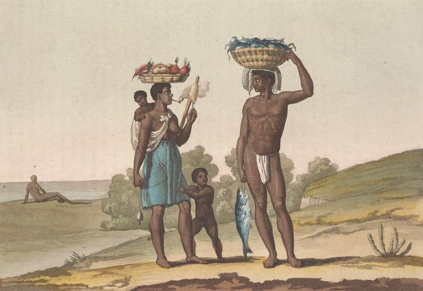 Le Costume Ancien et Moderne [Amerique] Vol. 2 - Negres sous un bon meitre (1821)