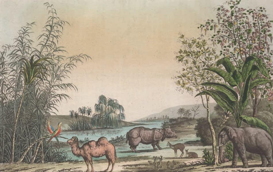 Le Costume Ancien et Moderne [Asie] Vol. 1 - Paysage caracteristique de la Chine (1815)