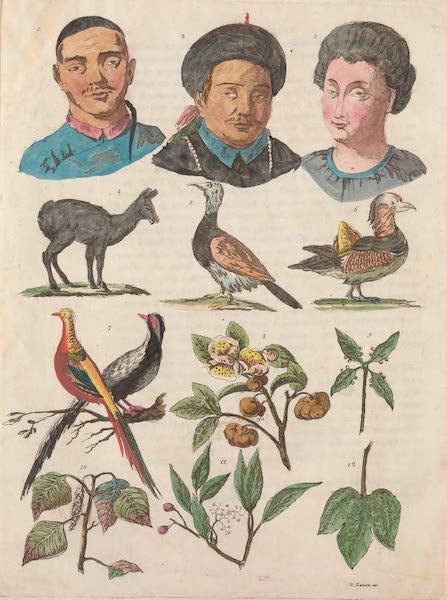 Le Costume Ancien et Moderne [Asie] Vol. 1 - Animaux et vegetaux de la Chine (1815)