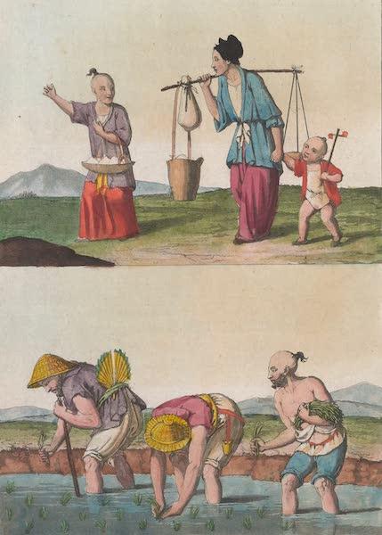 Le Costume Ancien et Moderne [Asie] Vol. 1 - Culture du riz (1815)