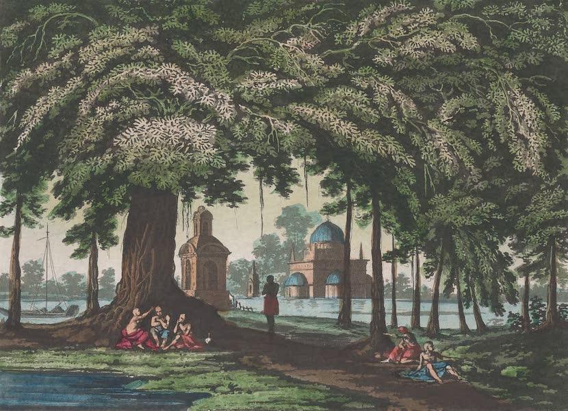 Le Costume Ancien et Moderne [Asie] Vol. 2 - Le Banian ou Ficus Indica (1817)