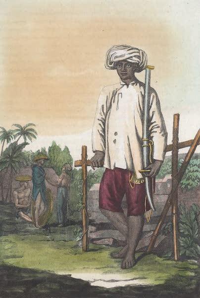 Le Costume Ancien et Moderne [Asie] Vol. 2 - Soldats Cochinchinois (1817)