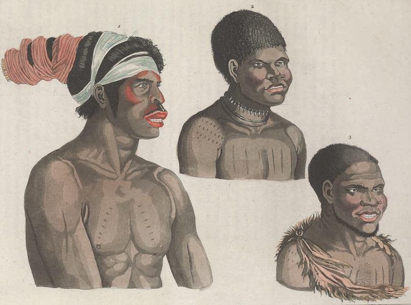 Le Costume Ancien et Moderne [Asie] Vol. 4 - Habitans de la Terre de Diemen [I] (1818)