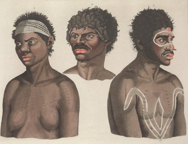Le Costume Ancien et Moderne [Asie] Vol. 4 - Habitans de la Nouvelle Hollande (1818)