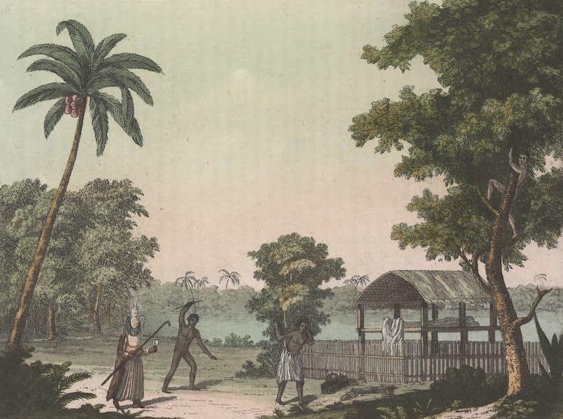 Le Costume Ancien et Moderne [Asie] Vol. 4 - Tapapow, lieu ou l'on expose les morts (1818)