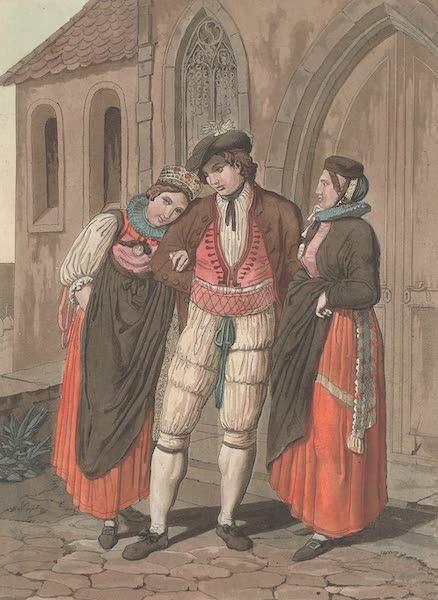 Le Costume Ancien et Moderne [Europe] Vol. 4 - XIX. Habillement de noce des Fribourgeois (1824)