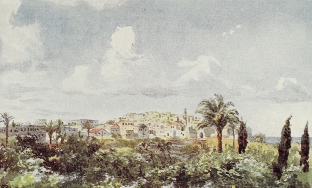 Letters from the Holy land - Jaffa (1906)