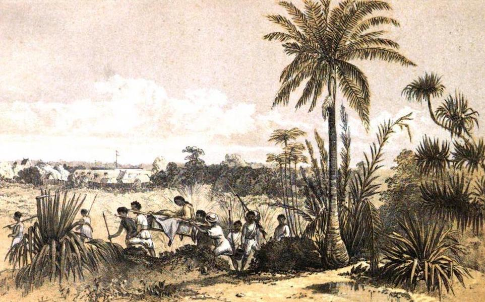 Madagascar and the Malagasy - Thomasina, the Fort of Tamatave (1866)
