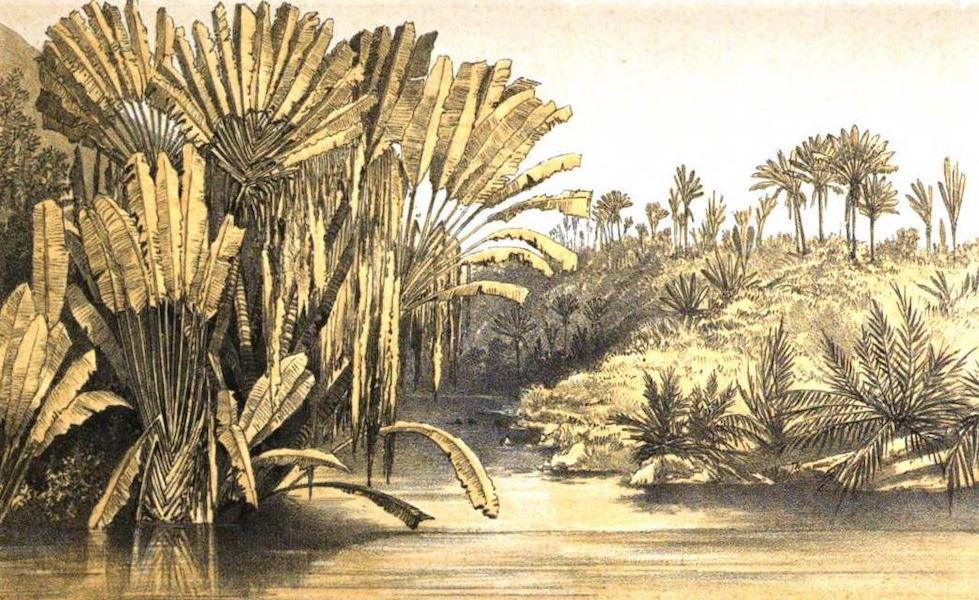 Madagascar and the Malagasy - River at Mahela (1866)