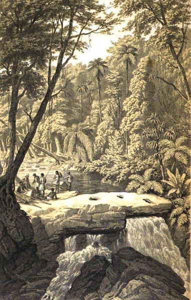 Madagascar and the Malagasy - Falls of Anevoga, Forest of Analamazaotra (1866)
