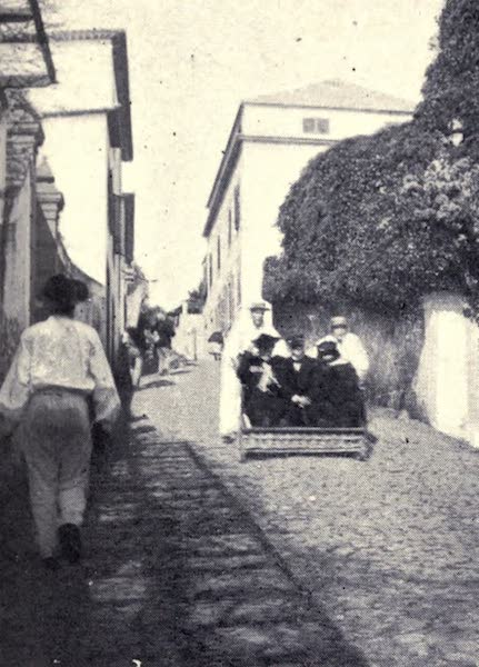 Madeira : Old and New - A Running Carro : Monte Road (1909)