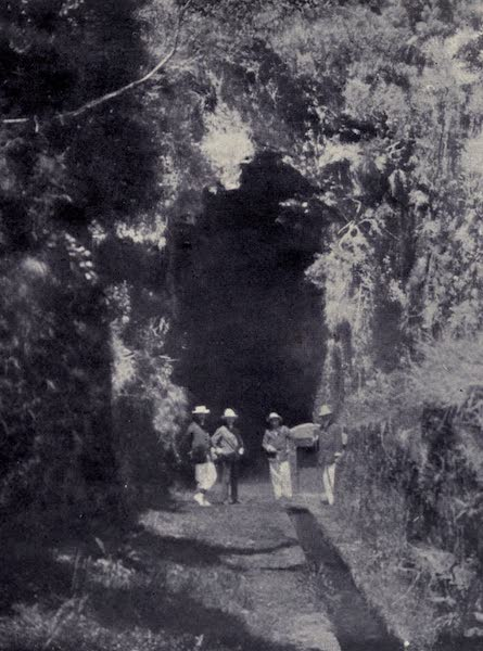 Madeira : Old and New - Rabacal Levada : Entrance to the Tunnel (1909)