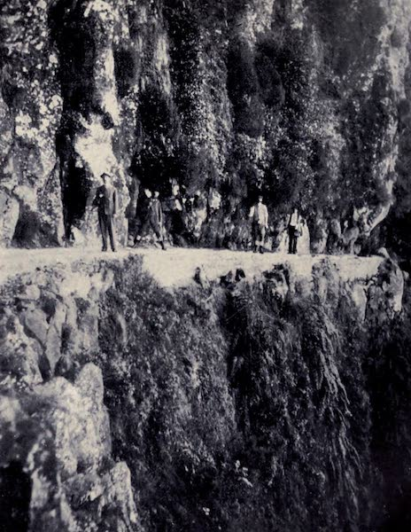 Madeira : Old and New - The Levada de Joao Gomes (1909)