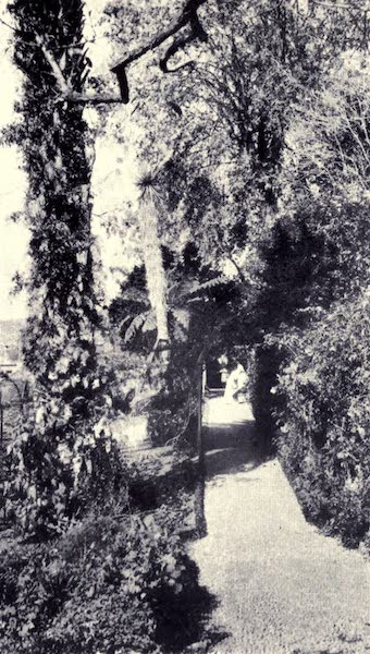 Madeira : Old and New - A Madeira Garden Party (1909)