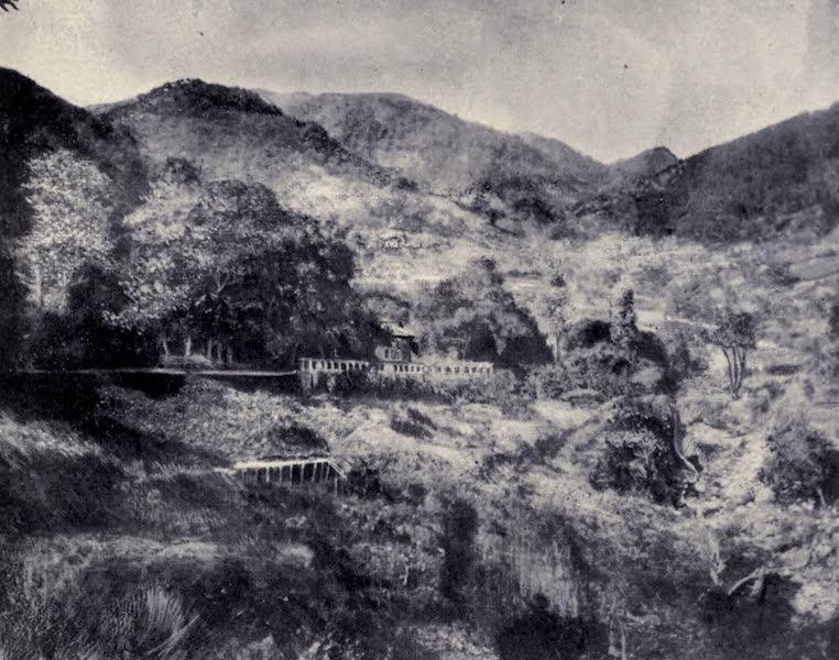 """Madeira : Old and New - """"Jardim da Serra"""" (1909)"""