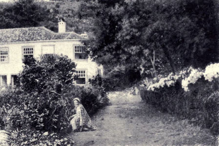 Madeira : Old and New - A Country House at the Mount (1909)
