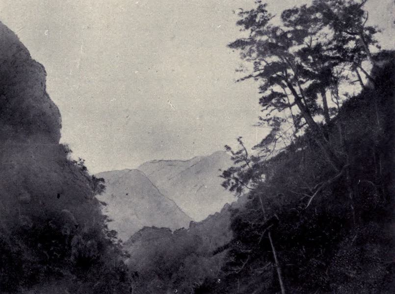 Madeira : Old and New - On the Northern Coast (1909)