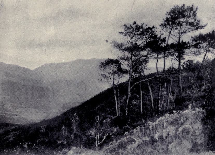 Madeira : Old and New - Approaching the Machico Valley (1909)
