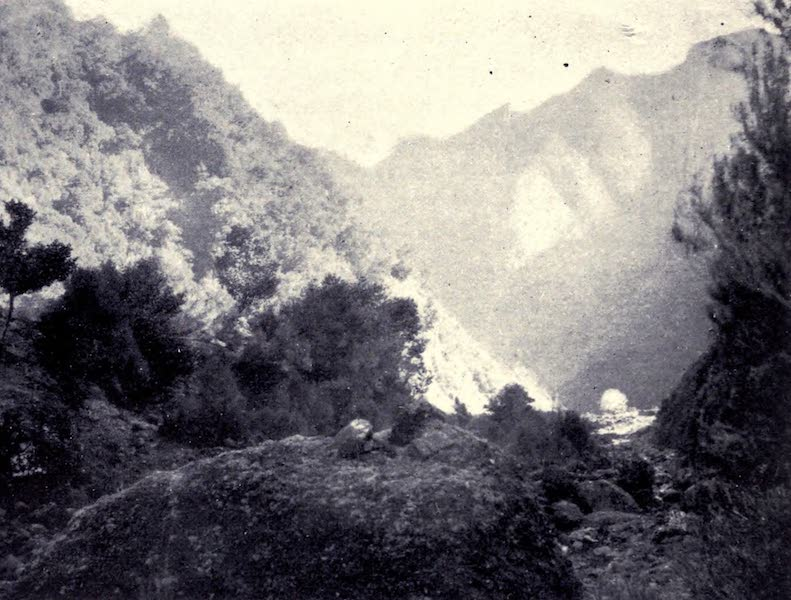 Madeira : Old and New - In the Matade Valley (1909)